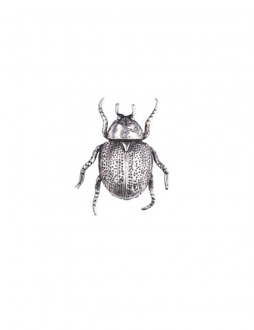 Sterling Silver Beetle Brooch
